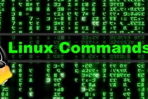 How to Run Last Terminal Command but as Root User (SUDO)