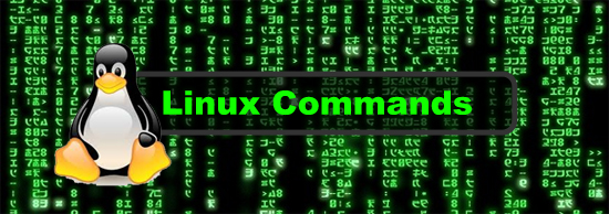 Linux-command-terminal