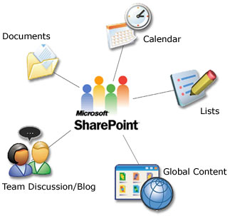 Sharepoint Experience