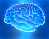 What Is Wet Brain Syndrome?