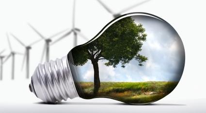 WildBlue-Eco-Friendly