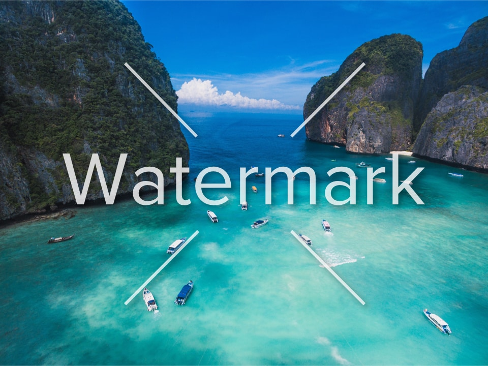 How to Remove Watermark from Video on Windows 10
